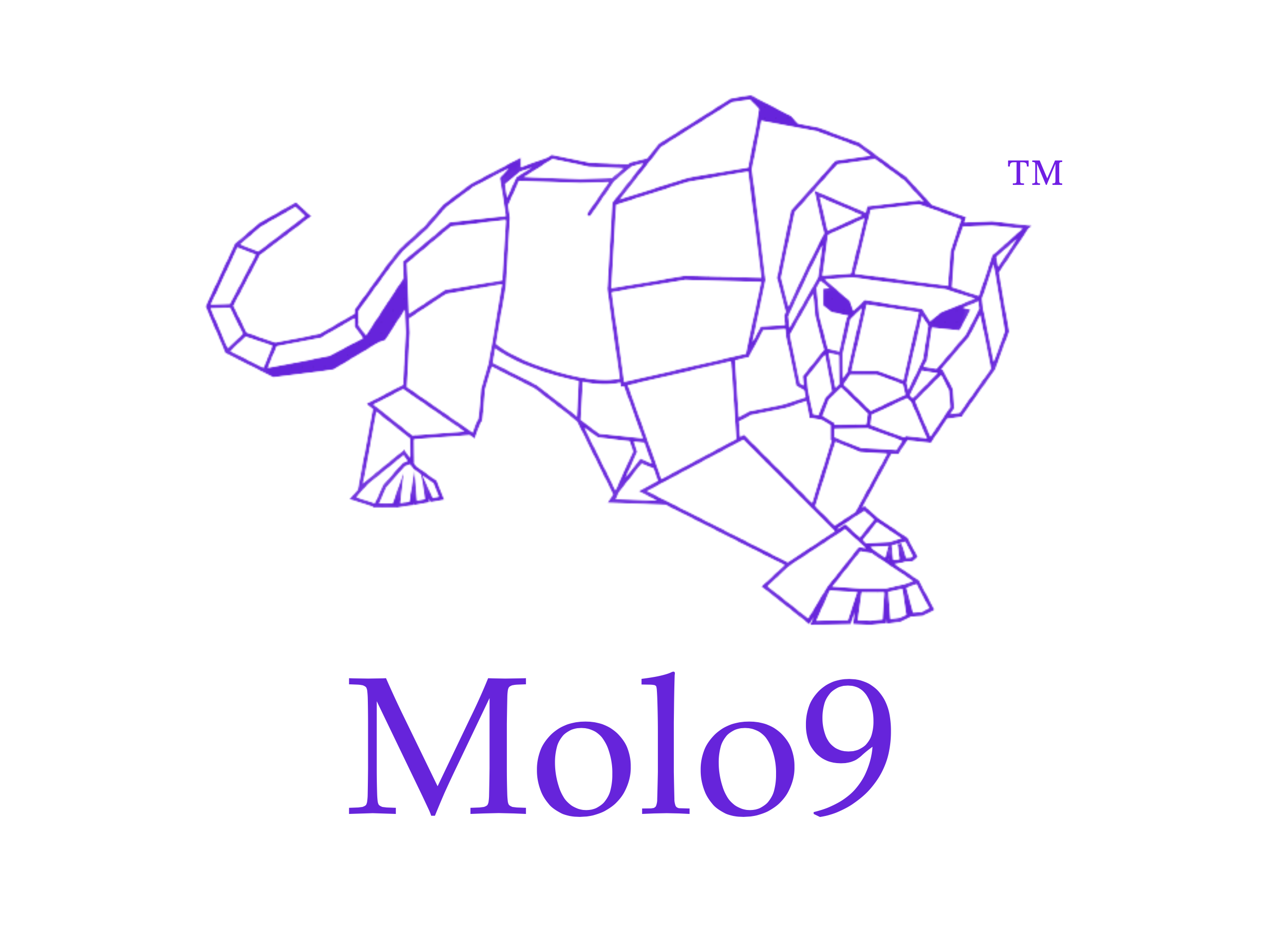 Molo9™ Template - insert client name HERE